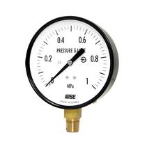 Đồng hồ đo áp suất Wise P110 - Thiết bị đo áp suất Hàn Quốc P110